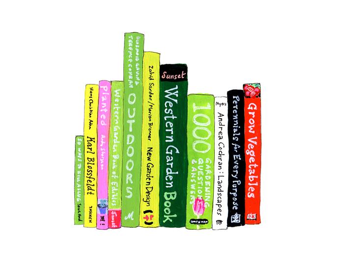 IdealBookshelf43
